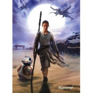 Фотообои Rey Star Wars