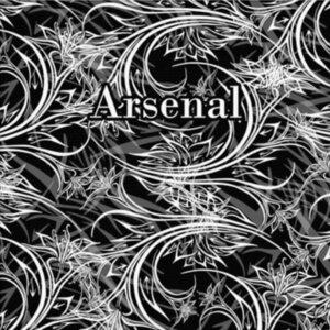 Холст Arsenal