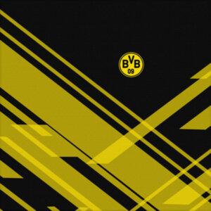Холст BVB Sport 2018