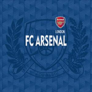 Холст FC Arsenal