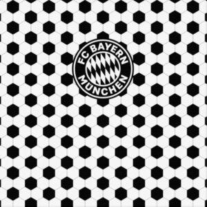 Холст FC Bayern Munchen