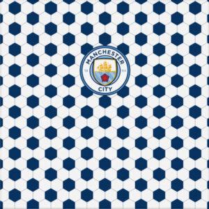 Холст FC Manchester City