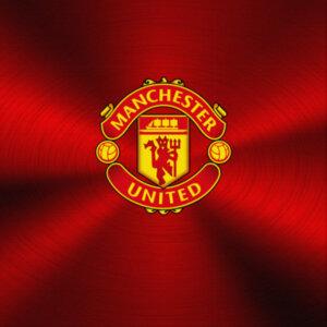 Холст Manchester United F.C.