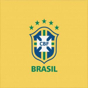 """Холст """"Сборная Бразилии"""""""