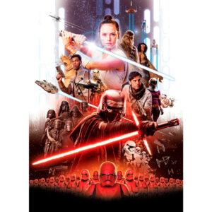 Постер фильма Звездные Войны Рей